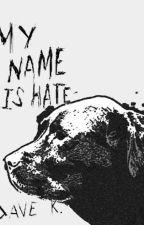 MY NAME IS HATE by okaydavek