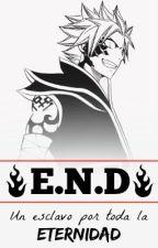 E.N.D by RosaDragneel