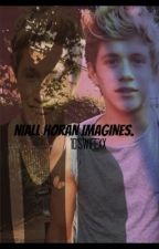 Niall Horan Imagines. by 1DsWifexx