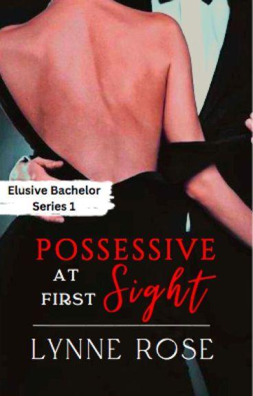 My Overly Possessive Billionaire (EBS 1) [Slowly Editing]