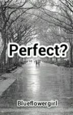 Perfect? by blueflowergirl