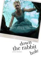 Down The Rabbit Hole by mydudeaj