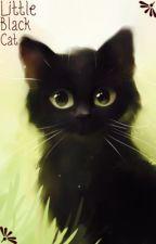 Little Black Cat by super_is1