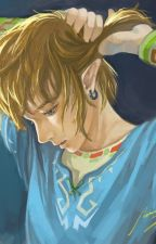 Link X Reader by Kayla1928