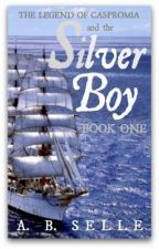 The Silver Boy by Annie_44