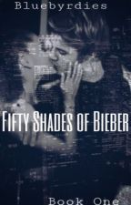 Fifty Shades of Bieber // jb & ag fanfic by bluebyrdies