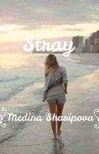 Stray by MedinaSharipova