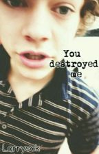 You destroyed me || Harry Styles {gay} by Larrysok