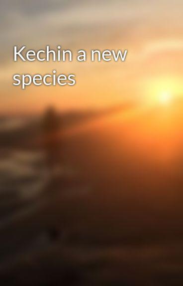 Kechin a new species