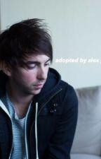 Adopted by Alex Gaskarth by bandsb4life