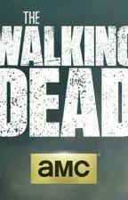 The walking dead by irosider