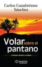 VOLAR SOBRE EL PANTANO by fatimareyesflores5
