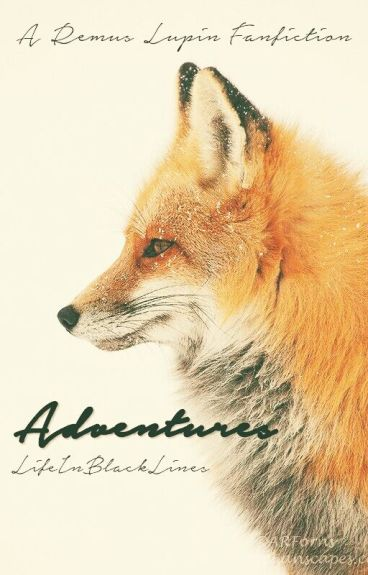 Adventures 》A Remus Lupin Fanfiction《