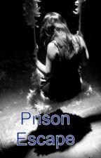 Prison Escape by crazyconvos