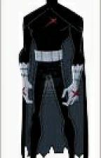 Teen Titans x Reader by cutekittywolf12