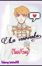 La cenicienta (Yaoi/Gay)© [Activo] by Kaburagi_kotetsu1401
