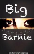 Big Barnie by smileyrayofsunshine