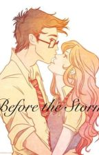 Before the Storm: a Jily Fanfiction by closet_nerd