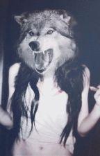 Teen Wolf (en pause) by loutokino
