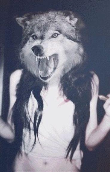 Teen Wolf (en pause)