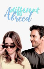 A Different Breed (Hawaii Five-0 Fanfic) by bellamysgirl