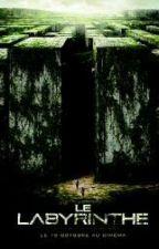 Le Labyrinthe ( Minho et Lya ) by Emma-Pr