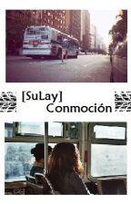 [SuLay] Conmoción by Misaki116
