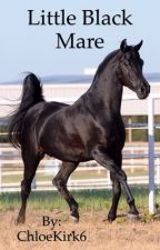 Little Black Mare by ChloeKirk6
