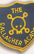 The Gallagher Academy by fangirlemz