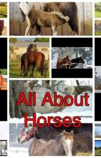 All About Horses by meston_af