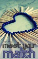 Meet your Match ♥ (Hiatus) by bebibebs
