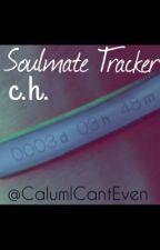 Soulmate Tracker by KailyeElizabeth