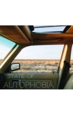 State of Autophobia by irwieash