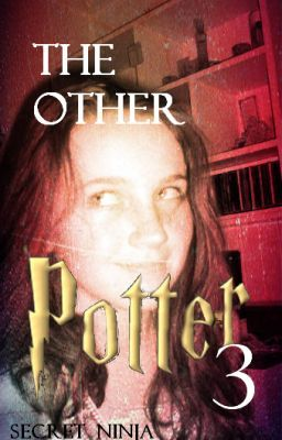 The Other Potter Book Three.