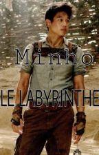 Le Labyrinthe - Emma & Minho. by ClaryCollinsLilyFray