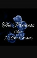 The Princess And 12 Guardians ( UNDER EDITING ) by flower_roses
