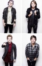 5 Seconds of Summer Preferences by loserfrangipane