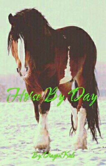 Horse By Day