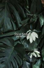 5SOS SMUT ✈ BOYXBOY by gayboyharry