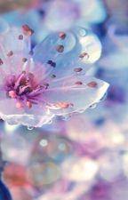 Письмо моей весне. by CAMELLIA-K-SECRET