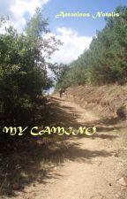 MY CAMINO by AntoninosNatalis