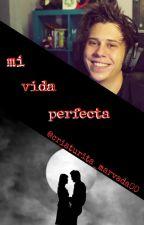 MI VIDA PERFECTA (Elrubius y tu) by Erii_2506