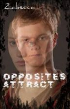 Opposites Attract (Emerquaid/Foxel fanfic) by Zakecca