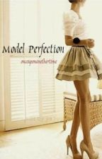 Model Perfection by OnceUponAnotherTime