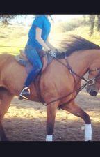 Arabian Love Story by Emily_rxwls