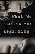 Book 1: What We Had in the Beginning by Imagination0615