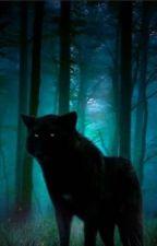 A hunter's mate is an alpha's heart by SylviaEWolf