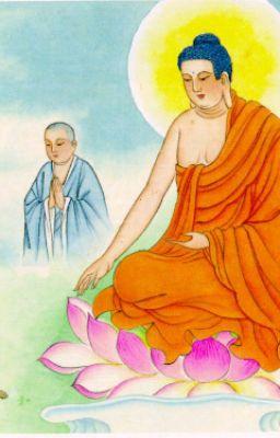 Đọc truyện Lời Phật Dạy Về Sự chung thủy Trong Đời Sống Vợ Chồng