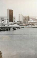 The city by catsflyandsodoi