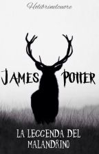James Potter: la Leggenda del Malandrino by holibrinelcuore